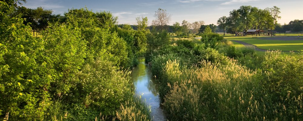Funding for Riparian Buffer Projects on your Property