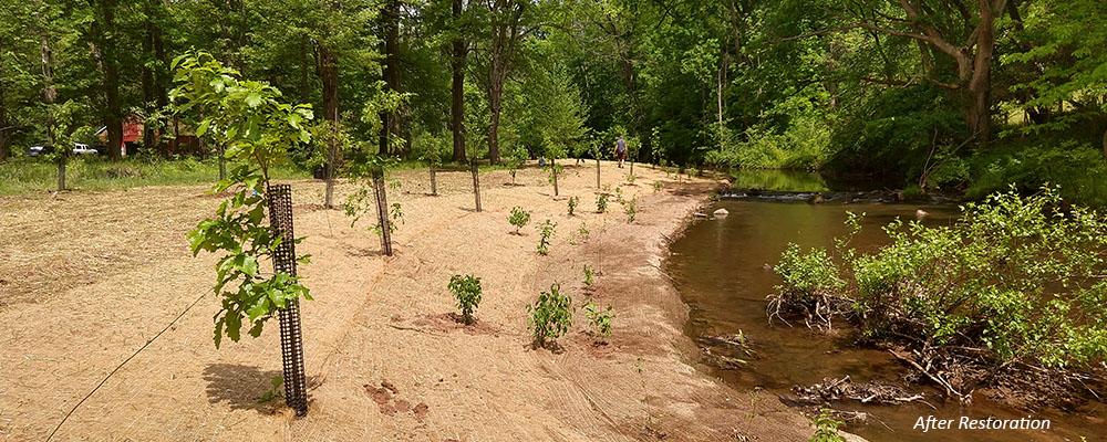 Cocalico Creek Stream Restoration