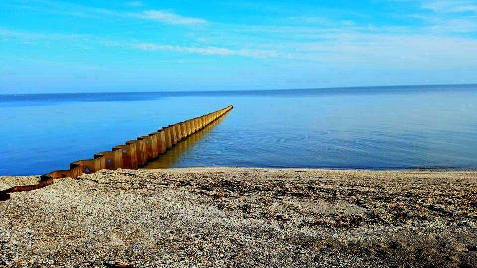 Magee Marsh, Lake Erie ©Mary Fry Comden