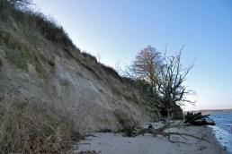 2015-01-04 Steilküste Holnis (3)