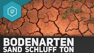 bodenarten-was-sind-sand-schluff-und-ton-boeden-basics-4