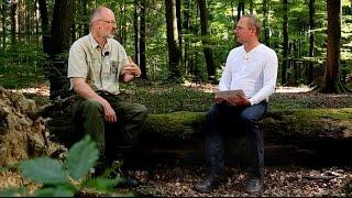 Peter Wohlleben – Einblicke in seinen Wald