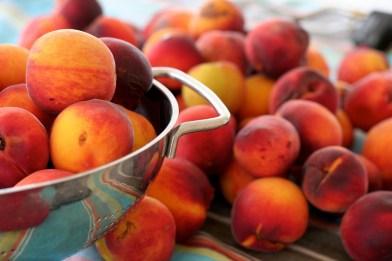 Ruston peaches are a Louisiana favorite.