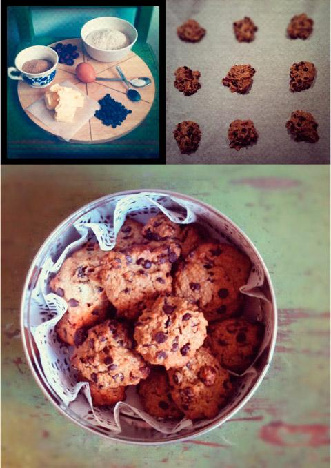 Galetes de nabius i xocolata