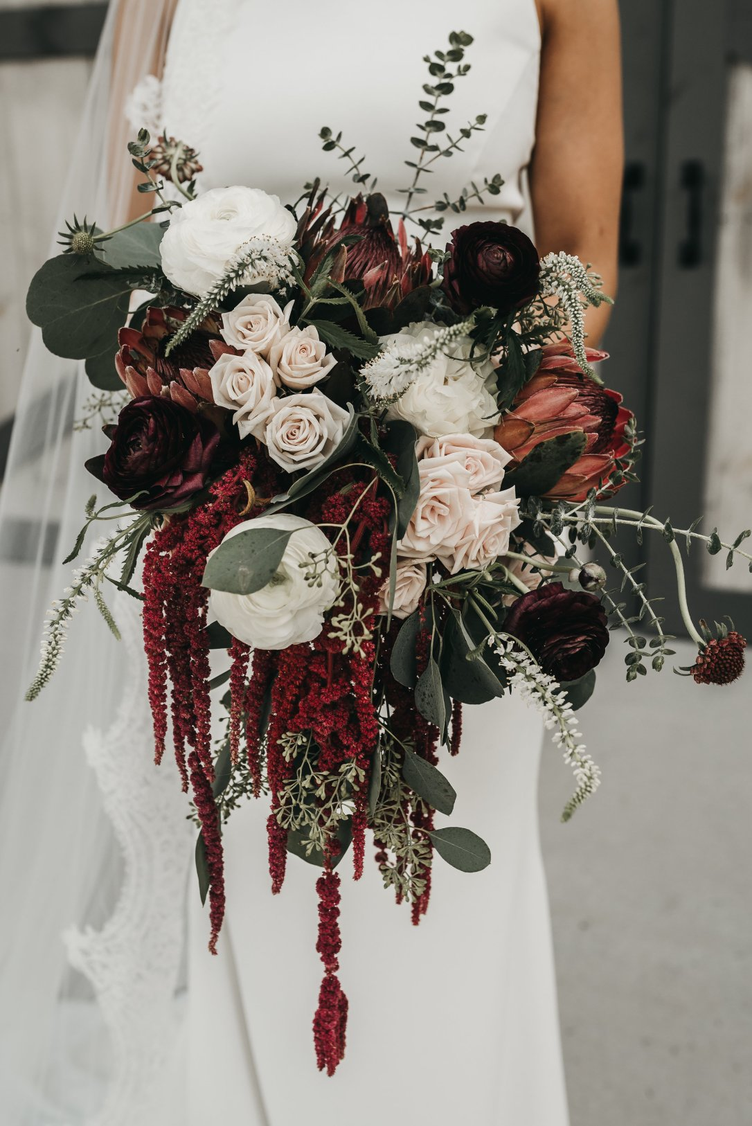 Burgundy Cascading Bridal Bouquet, Protea, Lang Floral Designs, Chattanooga Wedding