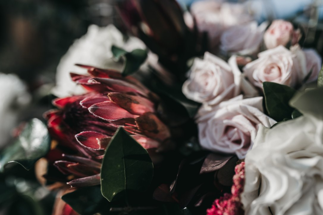 A modern fall wedding of burgundy and blush at Howe Farms in Chattanooga, Wedding Flowers by Lang Floral Designs, Photo by Rafferty Photo (Cascading Bridal Bouquet)