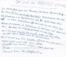 Beschreibung E-Wurf