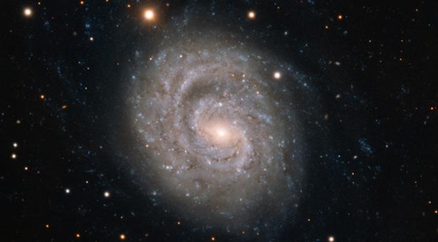 NGC 1637, galaksi spiral di konstelasi Eridanus. Kredit: ESO