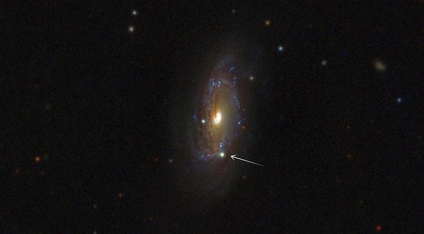 Bisakah kalian menunjukkan di mana si supernova dalam foto ini? Ya, di bagian bawah galaksi. Meskipun tampaknya seperti titik kecil, supernova itu sebetulnya bersinar seterang lima milyar matahari! Kredit: LCOGT.