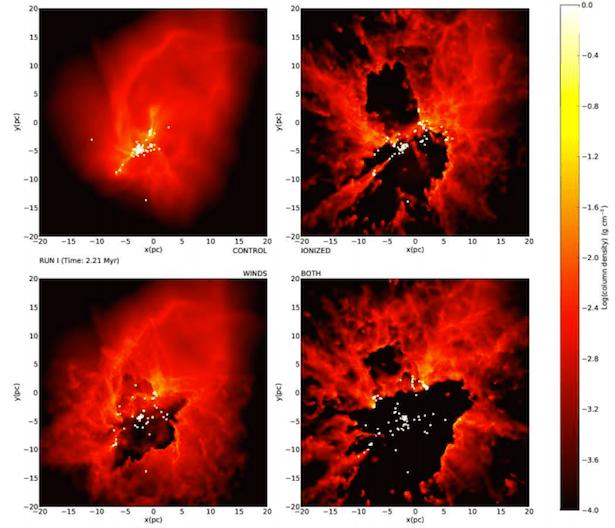 Kerapatan gas dingin dalam simulasi awan pembentuk bintang untuk melihat efek yang dihasilkan oleh berbagai umpan balik dari bintang ke lingkungan. Kiri atas: Tidak ada efek umpan balik. Kanan atas: Umpan balik berupa radiasi saja. Kiri bawah: efek umpan balik berupa angin. Kanan bawah: efek yang dihasilkan oleh radiasi dan angin pada lingkungan. Titik putih mengindikasikan lokasi bintang masif atau gugus bintang yang terbentuk, dan menjadi sumber dari radiasi yang mengionisasi gas dan angin. Radiasi memberi pengaruh lebih besar dari angin dan menyebabkan bentuk tidak terartu pada struktur awan.
