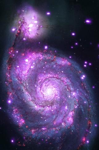 Galaksi Messier 51 yang cemerlang, tiap titik ungu terangnya merupakan jenis bintang ganda yang spesial, yaitu bintang ganda sinar-X. Kredit: NASA/CXC/Wesleyan Univ./R.Kilgard, et al/STScI.