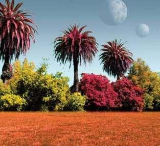Ilustrasi bentuk tumbuhan lain yang mungkin muncul di planet lain. Kredit: NASA