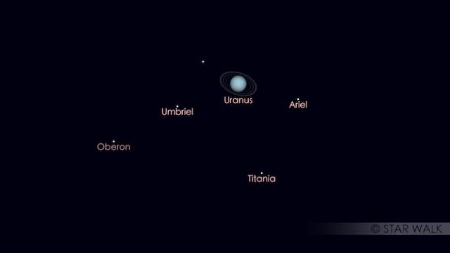 Kenampakan Uranus di bulan Juni. Kredit: Star Walk