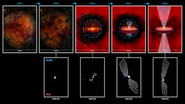 Skema pembentukan bintang berdasarkan 4 protobintang yang dipotret ALMA dan VLA. Kredit: ALMA (ESO/NAOJ/NRAO), N. Karnath; NRAO/AUI/NSF, B. Saxton dan S. Dagnello