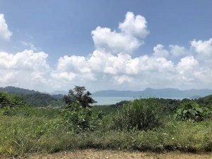 Stunning Elevated Panoramic Sea-view Land for Sale in Langkawi