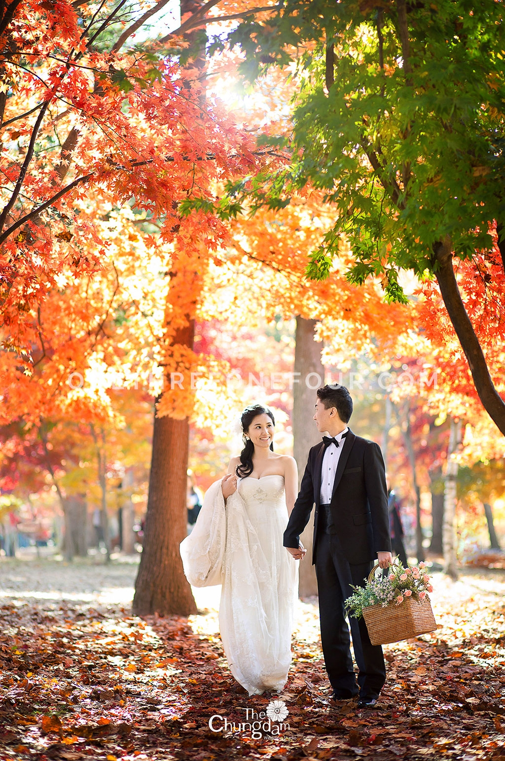 autumn seoul forest autumn outdoor shoot chungdam