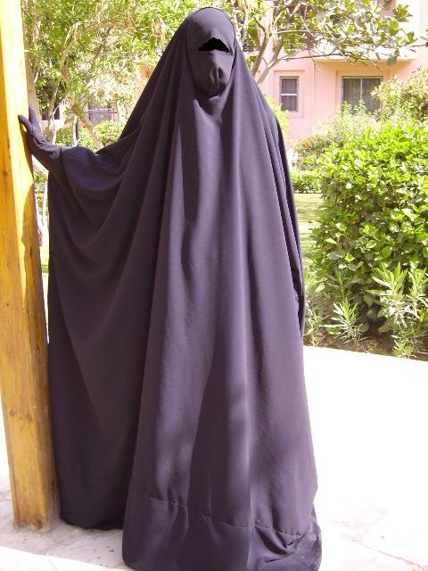 french mps vote to ban islamic full veil in public