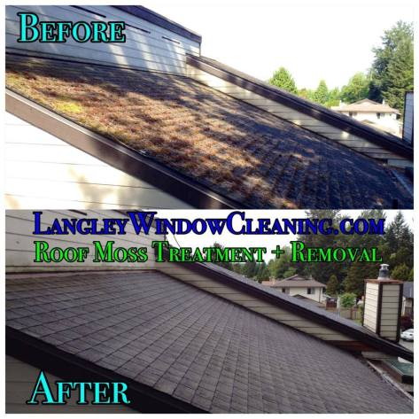 LangleyWindowCleaning.com – Roof Moss Removal