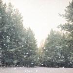 En vit jul?