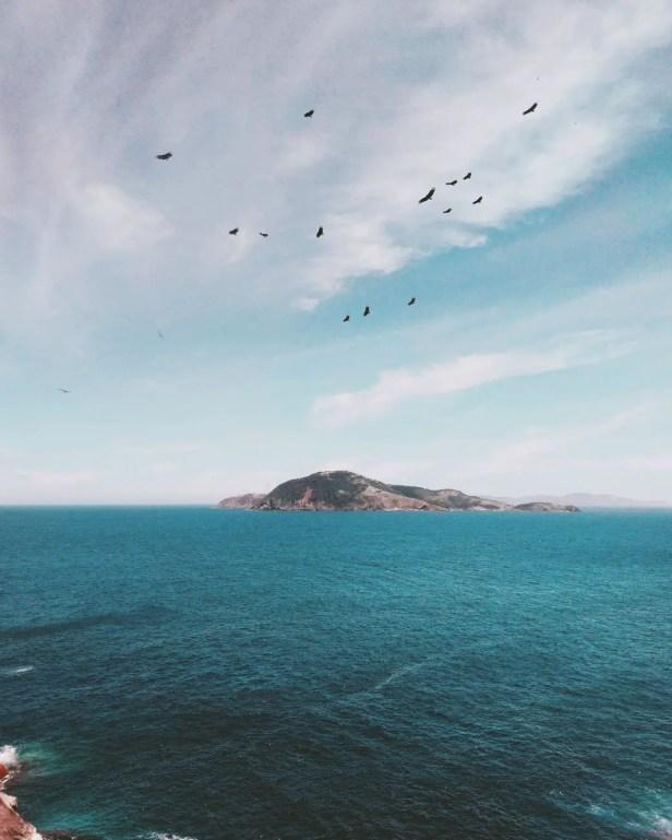 Aggettivi qualificativi, l'Isola di Arturo.