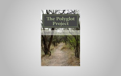 Introducing The Polyglot Project