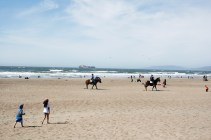Horses and a huge cargo boat?