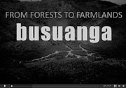 Busuanga: From Forests to Farmlands
