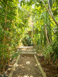 The well maintained path of greenery leading up Tahanan