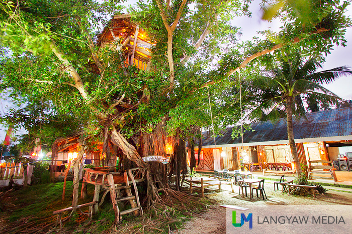The treehouse atop a balete tree was my home for a few days in Isla Gigantes