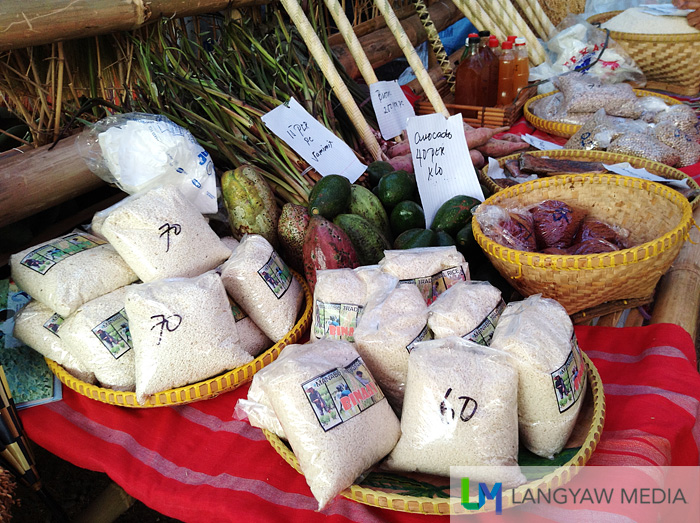 Agricultural products fair from the different municipalities