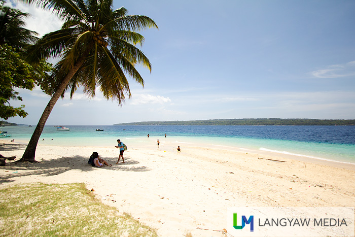 Coconut palms, white sand, crystal clear sea