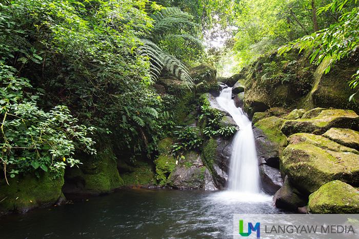 Pandua Falls with its shorter drop