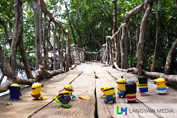 The Minions crossing the wooden footbridge at the Maquinit Hot Spring