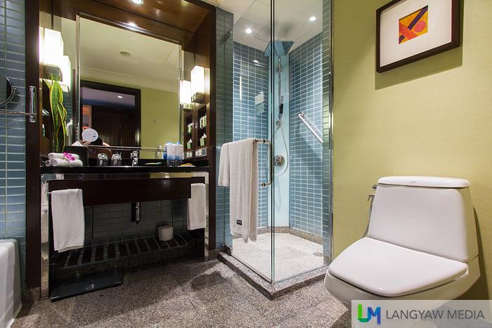 The premium deluxe toilet and bath