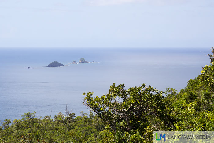Hen and Chicken Island as seen from the viewdeck