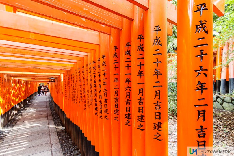 The torii tunnel. These vermilion colored gates, and there are said to be 10,000 of these, are offerings by Japanese businesses as Inari is also a patron of business.