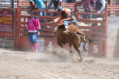 This cowboy is totally twisted on the bull