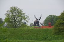 Copen-Blog-IMGP3932