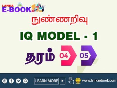 IQ model paper