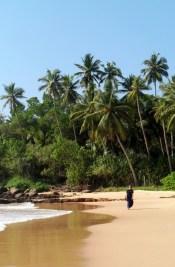 Looking west along goyambokka beach with Katherine
