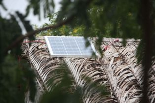Solar power in the delta