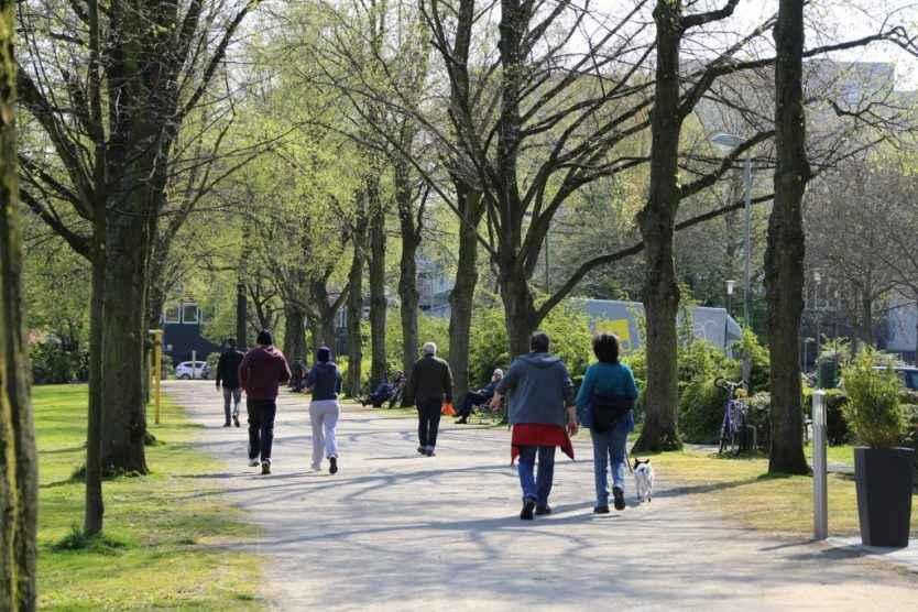 Caminhada no parque