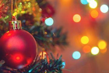 Dia de desmontar a árvore de natal