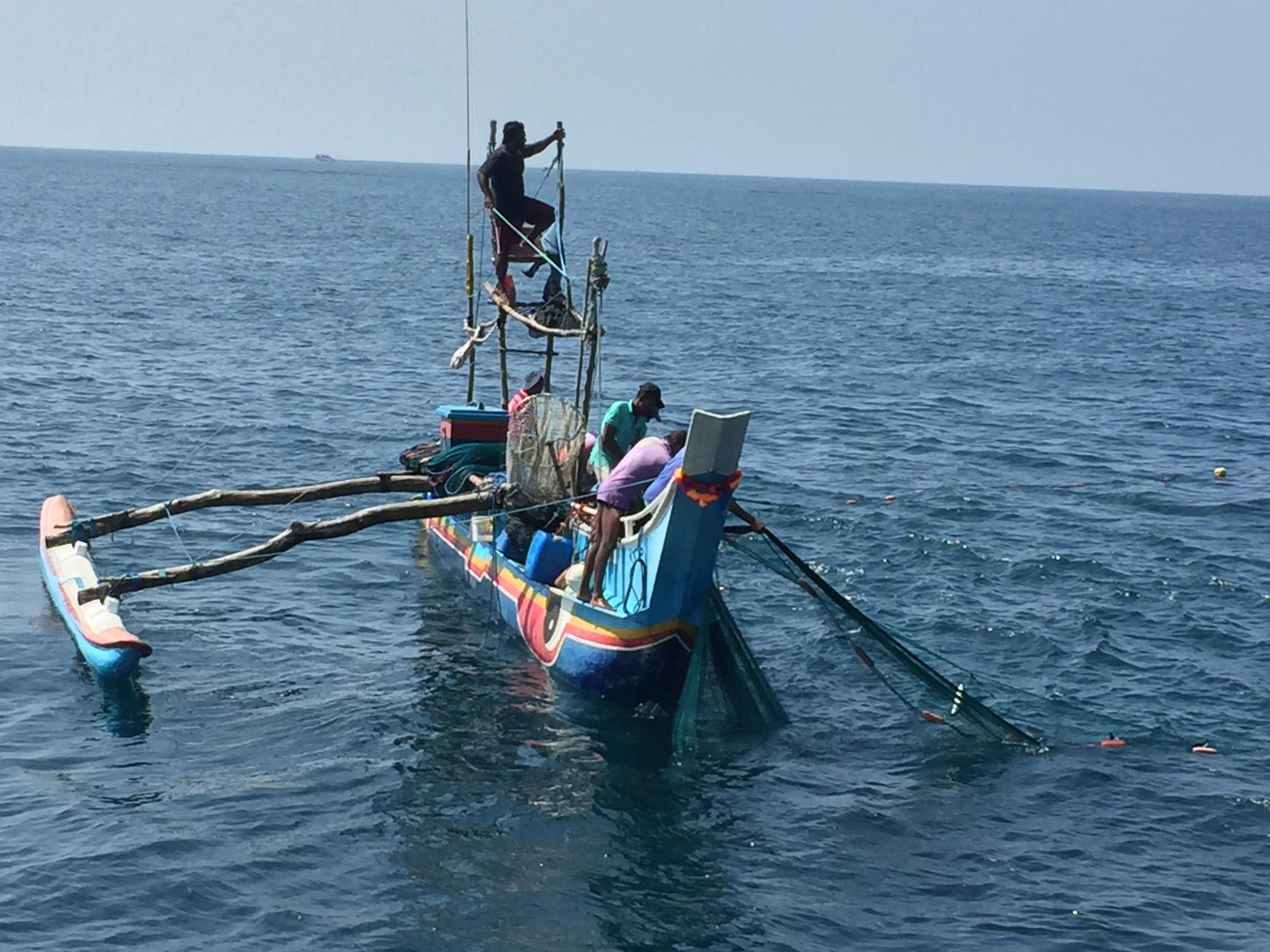 Sri lanka Tuna