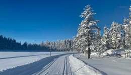 Les meilleurs endroits proches d'Oslo pour faire du ski de fond