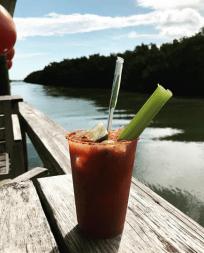 Un viaje inolvidable por los Cayos: Key Largo