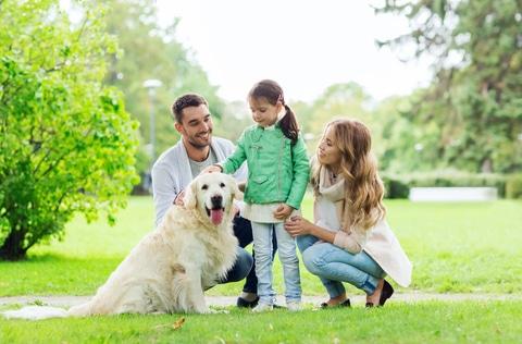 ¿Cómo saber si adoptar una mascota será de beneficio para la familia?