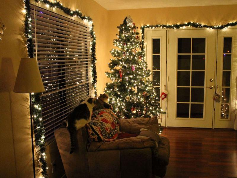 Recuerde desconectar las luces navideñas y apagar las velas antes de irse a dormir