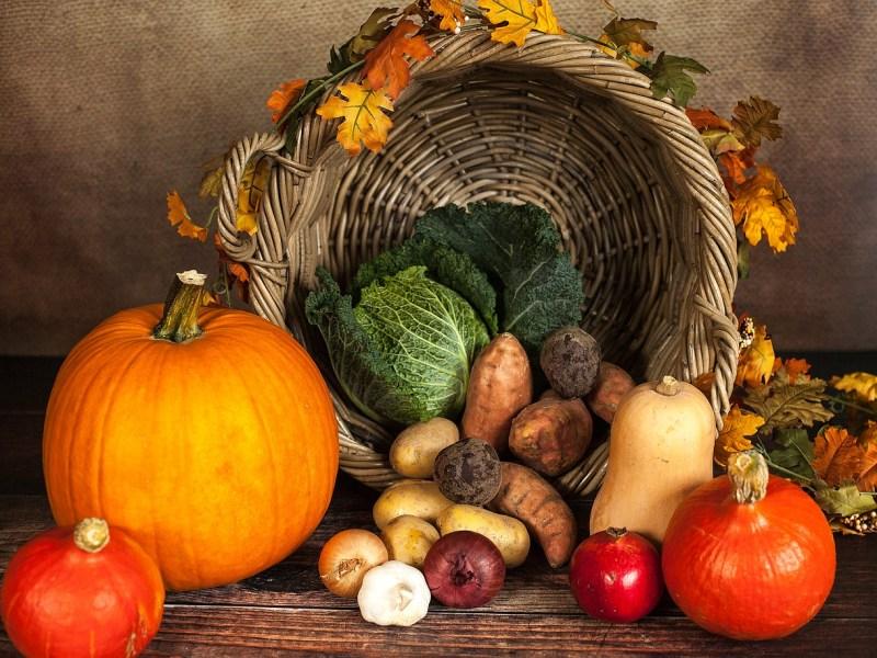Dia de Acción de Gracias