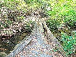The-Cascades-Trail4